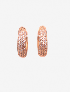Øreringe med sten